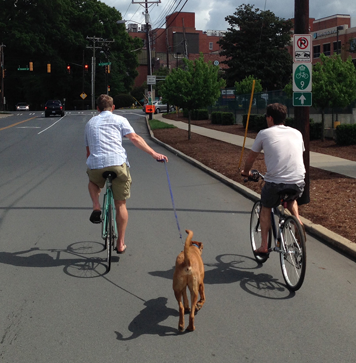 charlotte-bikers-and-dog