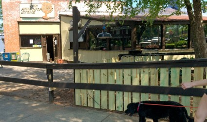 Defunct Philosopher's Stone will reopen as a dog bar in 2 weeks