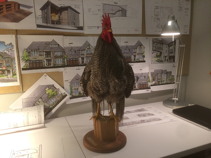 chicken-at-cluck-architecture