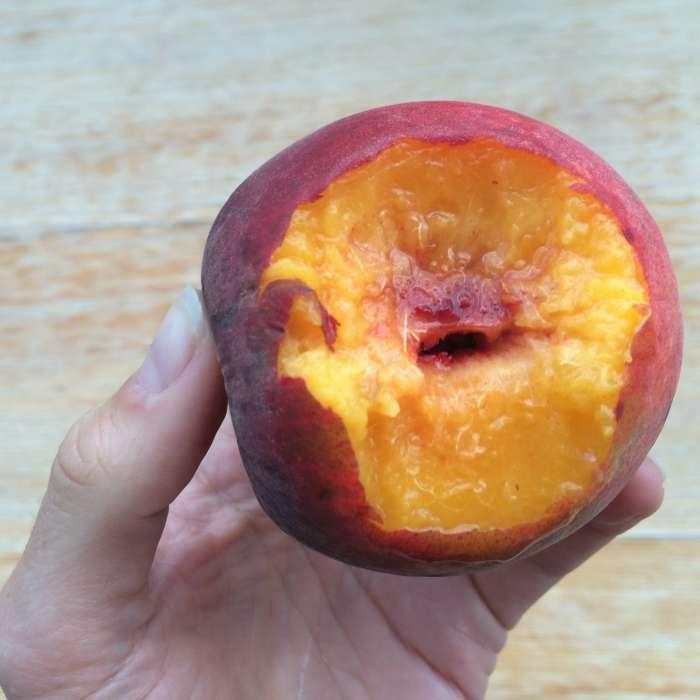 NC peach
