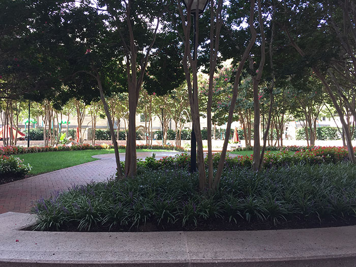 525-tryon-outdoor-space