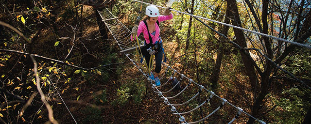 Canopy-Tour-at-Whitewater-Center