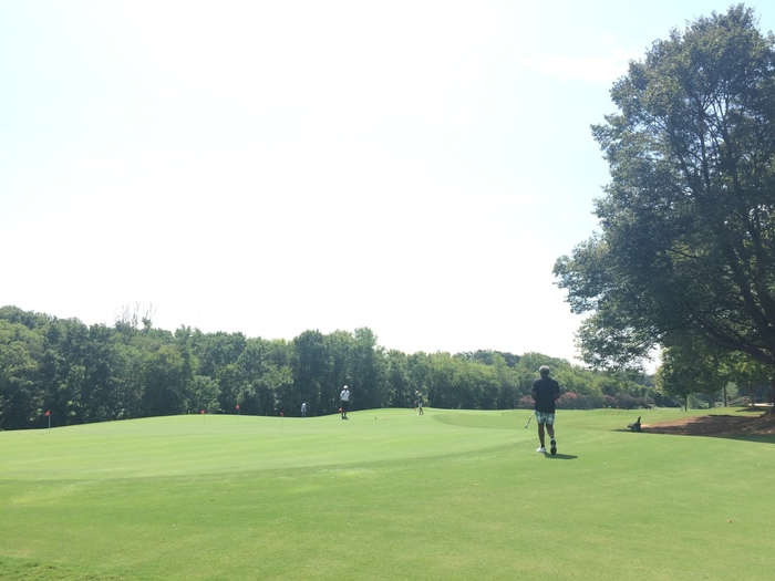 Revolution Park golf