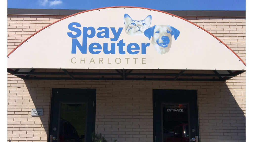 A look at Spay Neuter Charlotte: More welcoming than your doctor's office