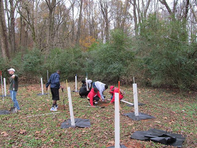 Charlotte Public Tree Fund
