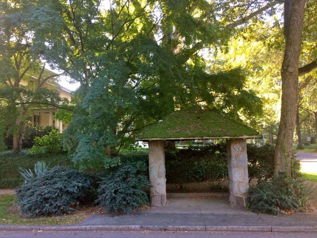 What are those mossy huts in Myers Park?