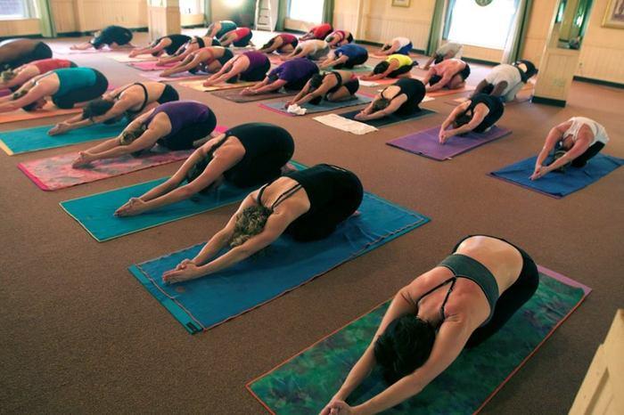 Yoga Oasis Charlotte