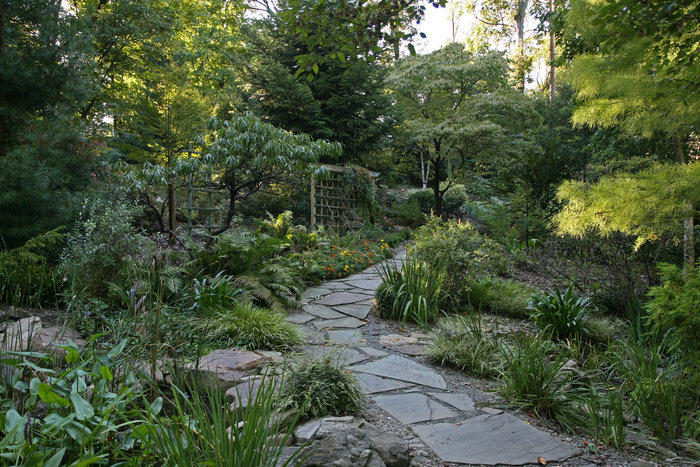 UNCC Botanical Garden