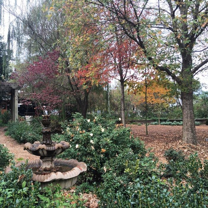 McGill Rose Garden