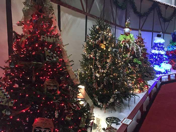 southern-christmas-show-trees