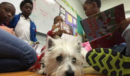 These dogs are Charlotte's best reading buddies