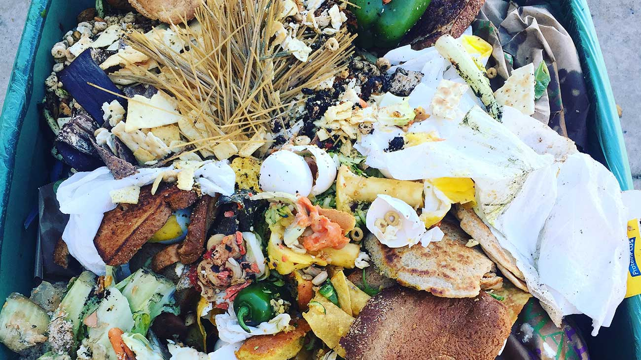 This startup team is making composting in Charlotte a no-brainer
