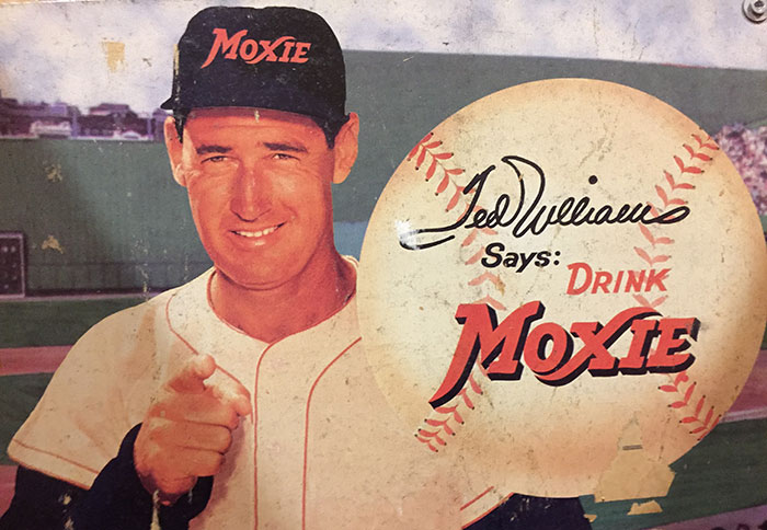 ted-williams-moxie-charlotte