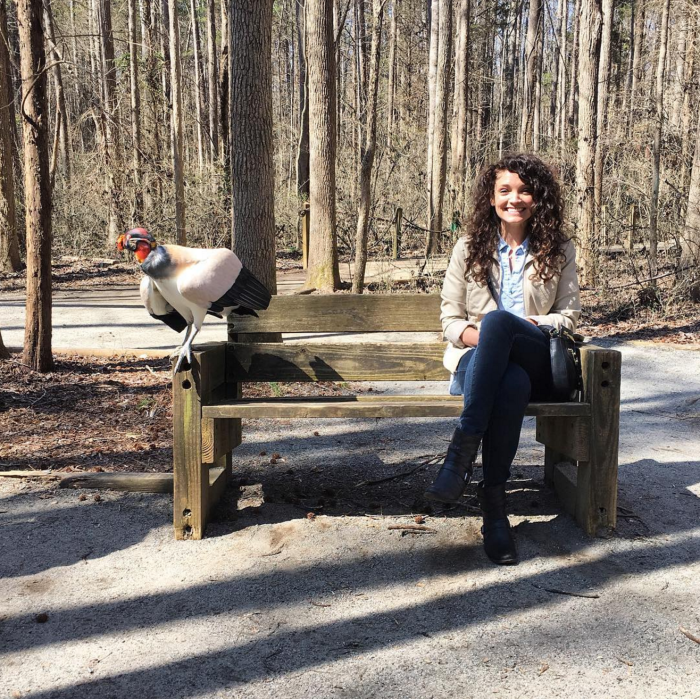 katie levans carolina raptor center