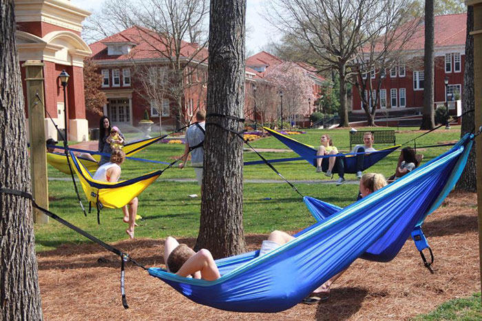 Hammocks-on-the-Queens-Quad
