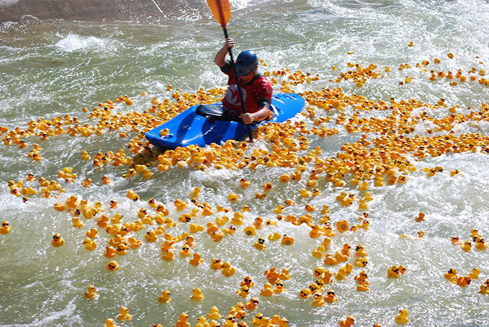 duck-race-usnwc