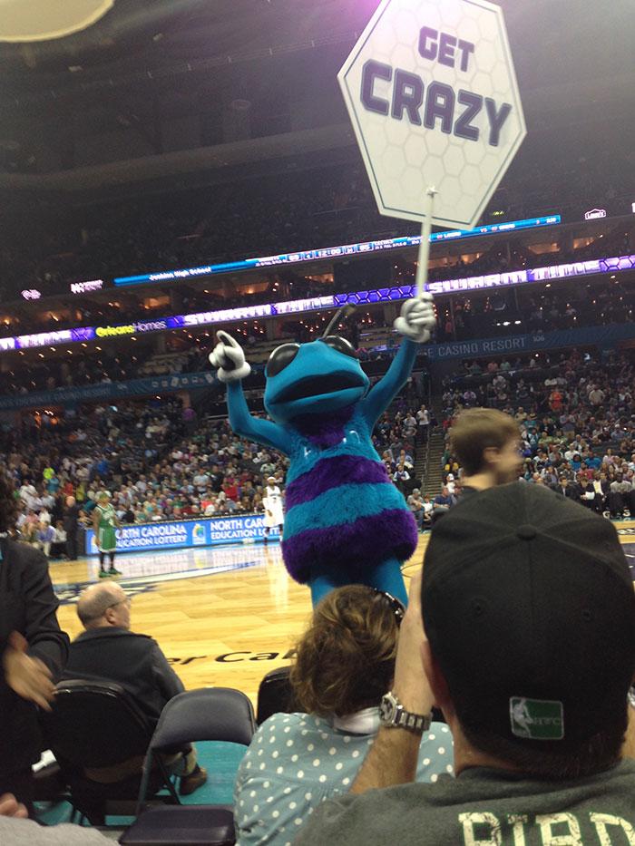 hornets-mascot