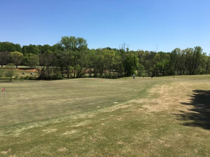 short game area golf renaissance park