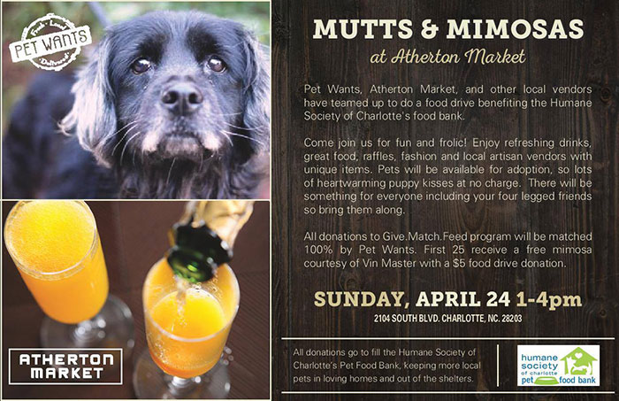 mutts-and-mimosas