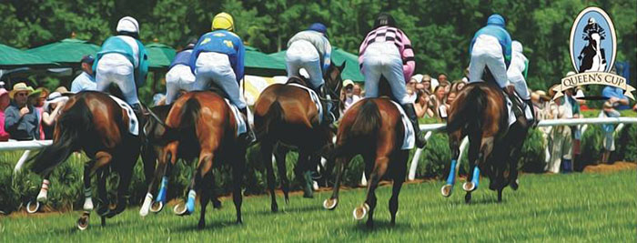 queens-cup-steeplechase
