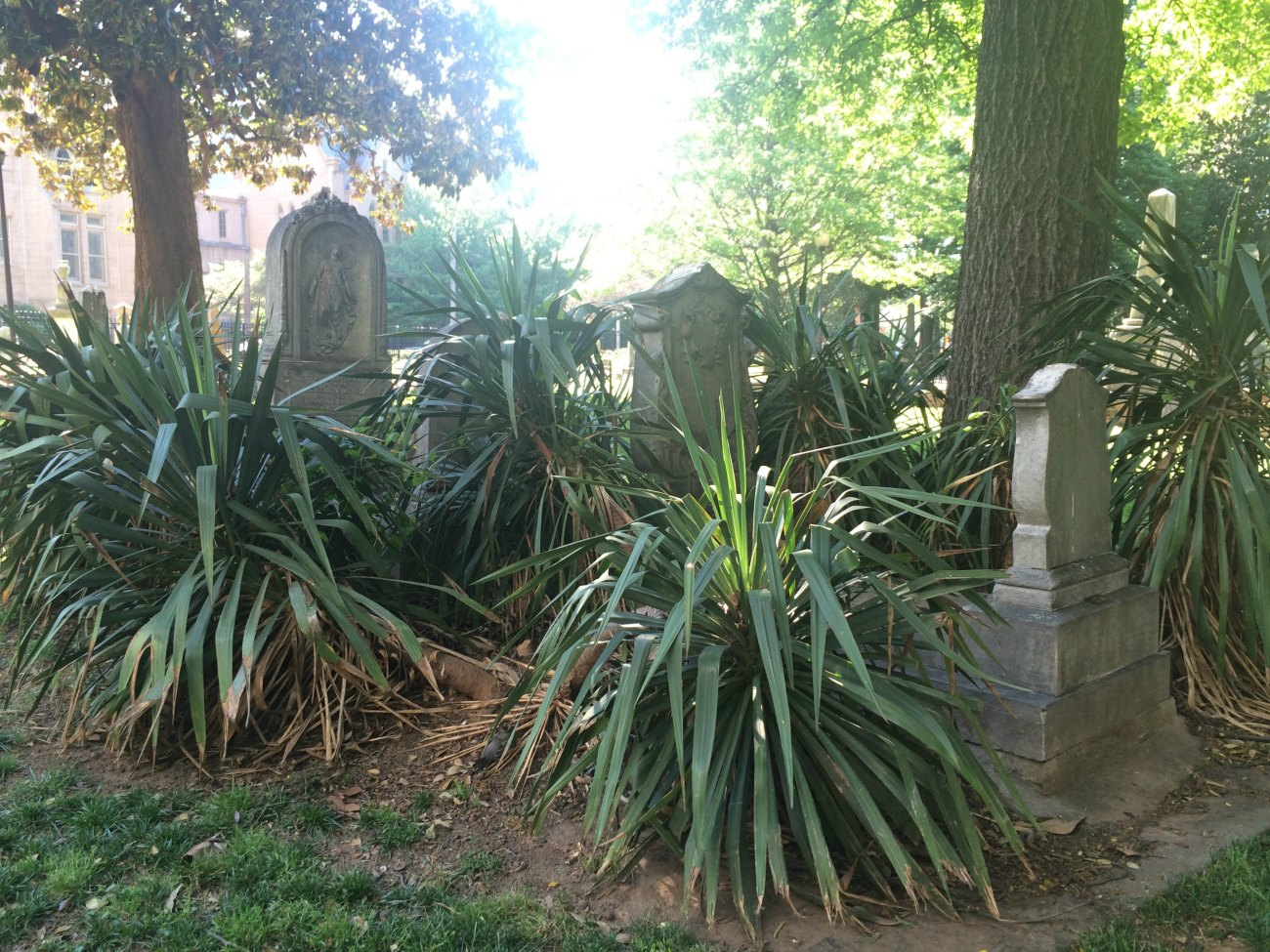 Charlotte's oldest cemetery is almost as old as the city itself