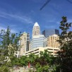 Cash Confessional: A week of spending in Charlotte on a $48,000 salary