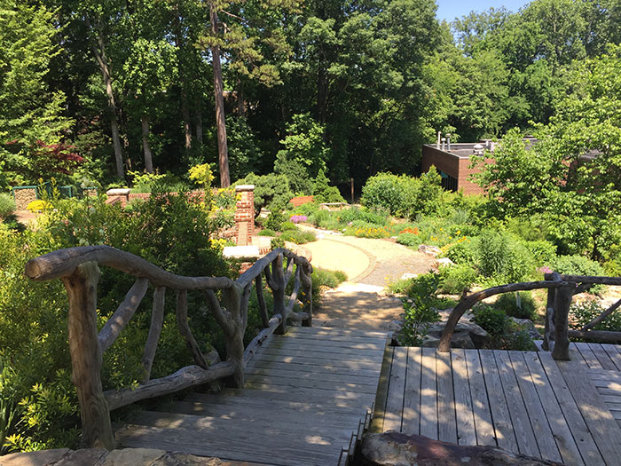 5 spots to sit outside, recharge and refocus - Charlotte Agenda