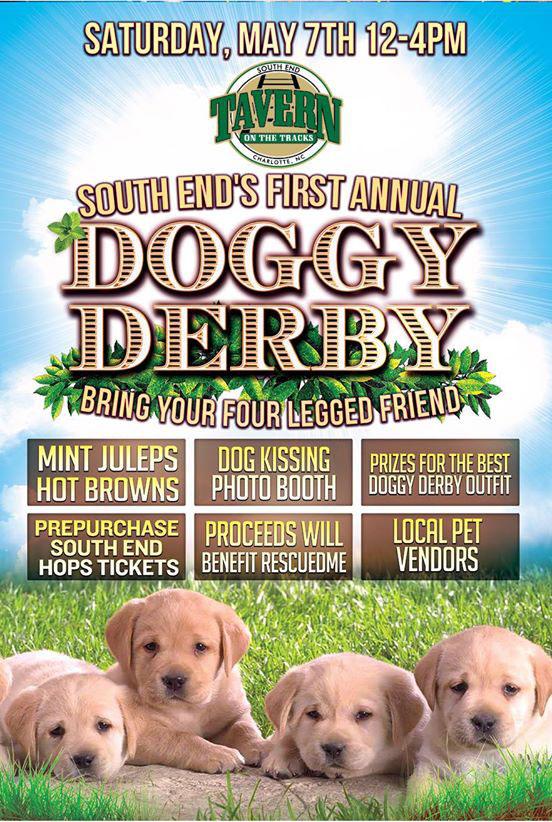 doggy-derby