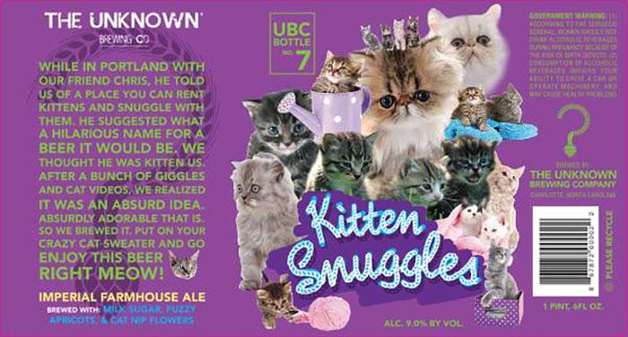 kitten-sunggles