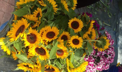 4 places to buy fresh flowers in Charlotte