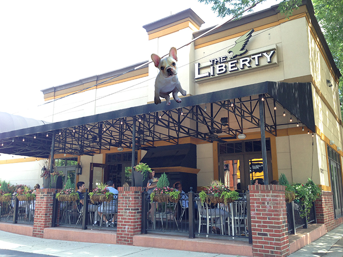 the liberty patio dog