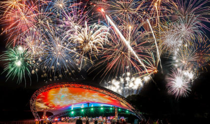 Agenda Weekender: Events like firework shows, silent discos and puppy photo...