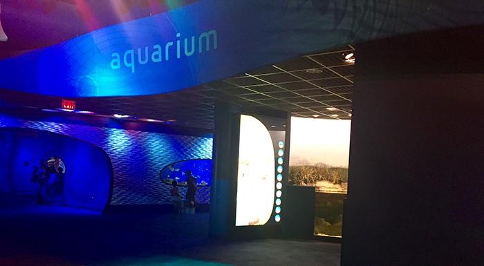 DiscoveryPlaceqaurium