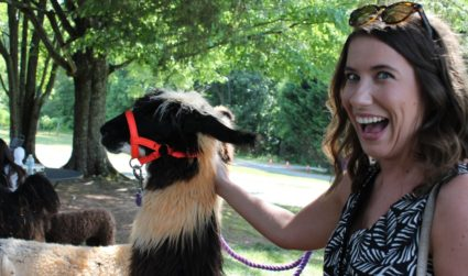 There's a llama winery 90 minutes from Charlotte and it's magical