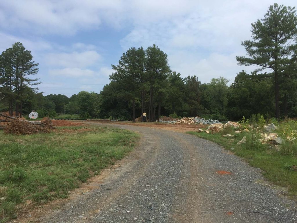 Two apartment buildings have been demolished to create a nature reserve near Elizabeth