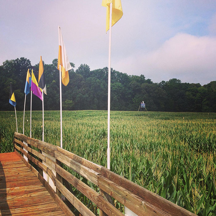 rural-hill-corn-maze