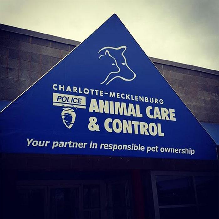 charlotte-animal-control