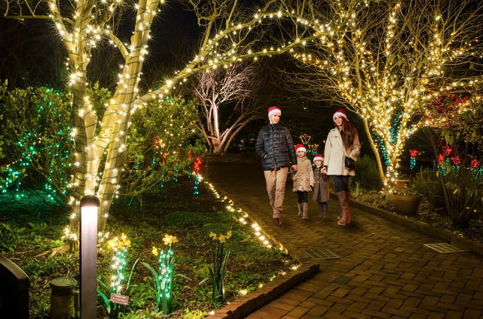 19 holiday events in charlotte that kick off as early as - Daniel stowe botanical garden christmas ...