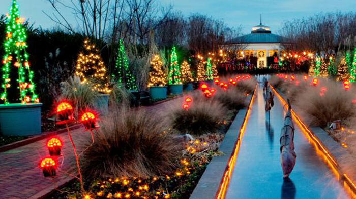 18 charlotte spots that are sure to fill you with - Daniel stowe botanical garden christmas ...