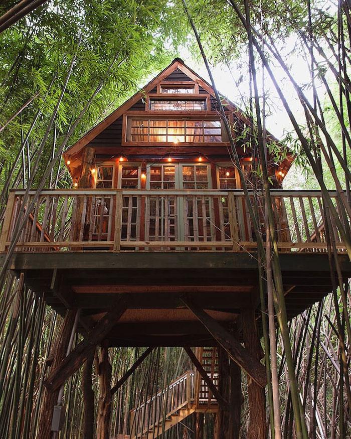 alpaca treehouse - Treehouse Masters Prices