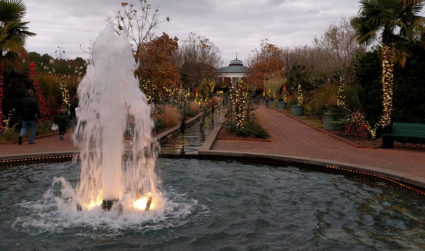 My toddler and I are obsessed with Daniel Stowe Botanical Garden's...