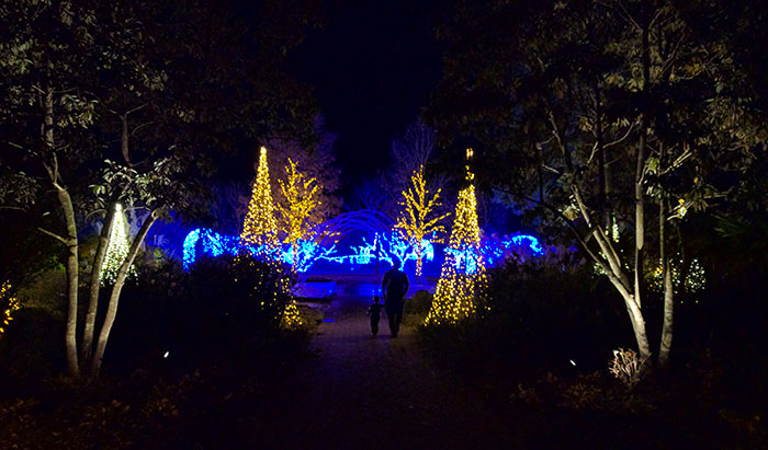 My toddler and i are obsessed with daniel stowe botanical - Daniel stowe botanical garden christmas ...