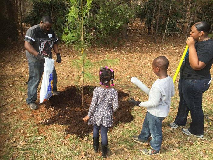 trees-charlotte-planting