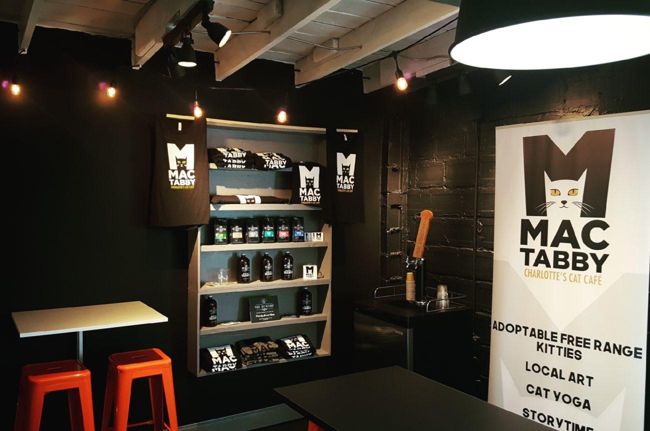 Mac Tabby Cat Cafe will open November 11 in Optimist Park