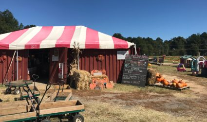 Hall Family Farm is ready for fall with hayrides, a corn...