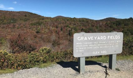 Anxious for some fall color? Try a day trip to Graveyard...