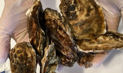 Clean Catch offers turnkey backyard oyster roasts. With a $500 minimum, you can focus on beer and slurping oysters