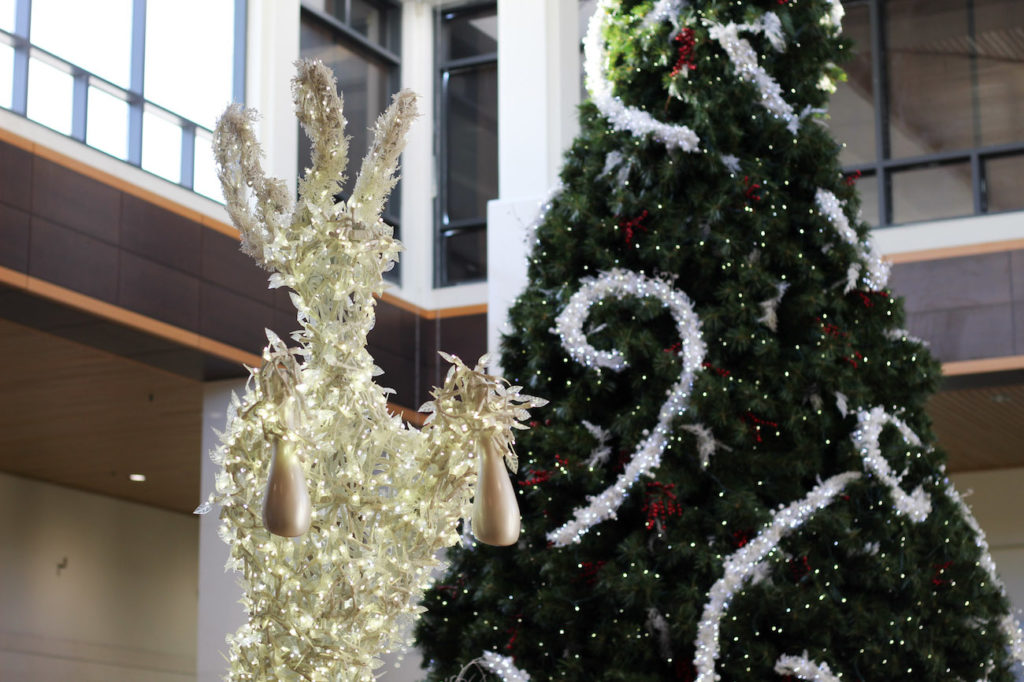 Your SouthPark holiday shopping guide: Hours, new stores and pro tips