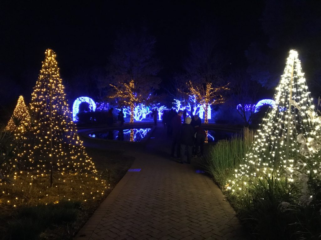 Daniel Stowe Botanical Garden's holiday light display is now open for the season