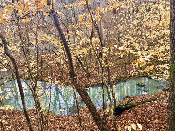 creek-at-badin-lake